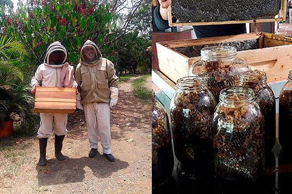 Finca Herencia felino y Jose María con el traje de proteccion y productos del apiario