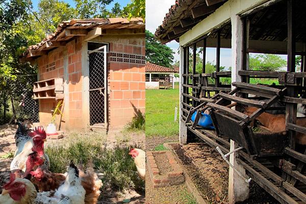 Fonca Herencia detalles del gallinero y establo de cabras